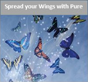 Spread your wings with Pure
